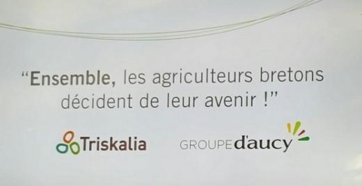 d'Aucy et Triskalia.